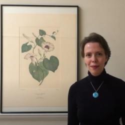 Video: Joseph Banks Florilegium