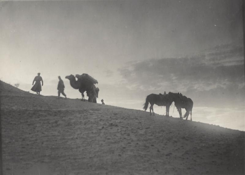 Sven Hedin's last expedition in the Gobi Desert